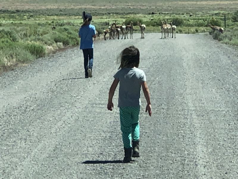 Sofie and Lara Approaching the Pronghorn