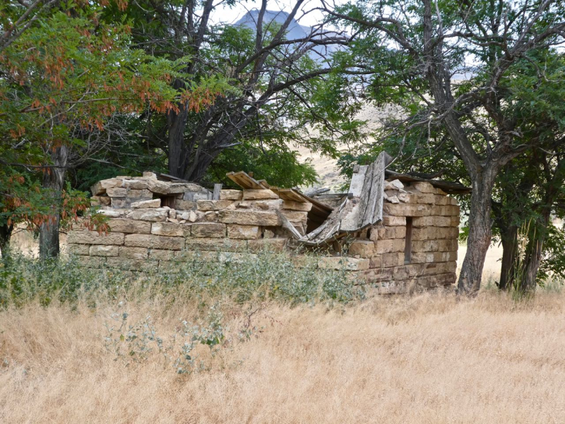Griffith Ranch (1)