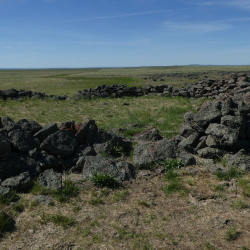Ruins of Rock Corral on Jim McCain property (1)