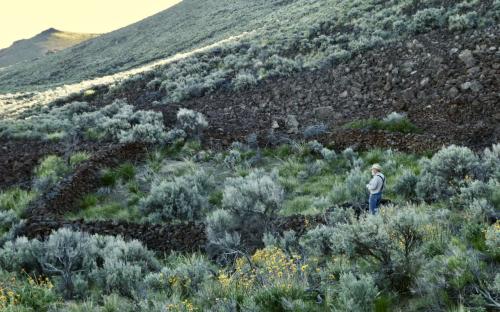 Blue Canyon rock corral (7)
